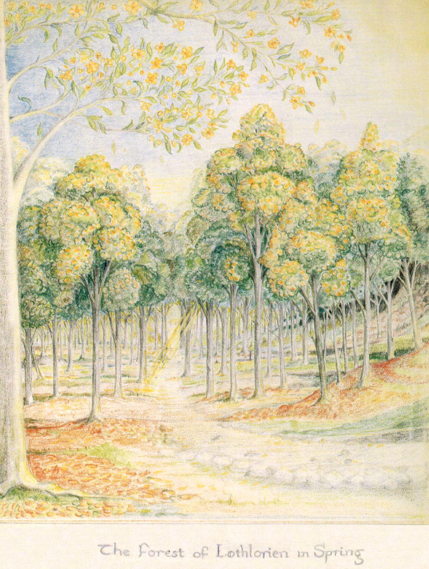 The Forest of Lothlorien in Spring - J.R.R. Tolkien