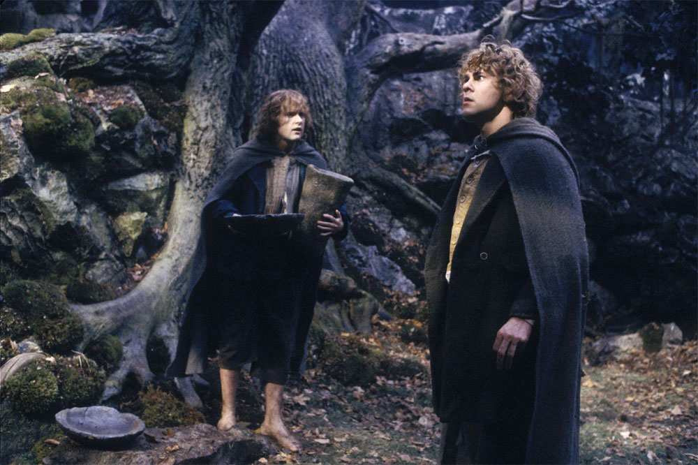Merry and Pippin in Treebeard's Home